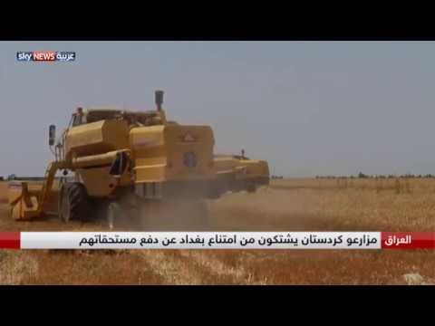 بالفيديو مزارعو كردستان يشتكون عدم صرف مستحقاتهم
