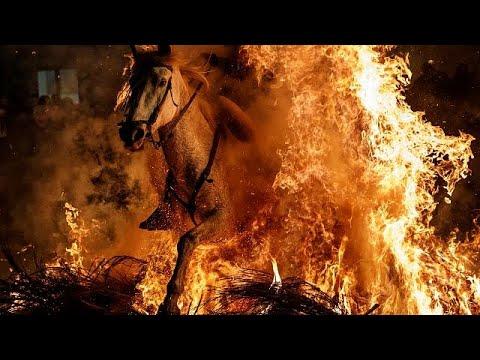 تطهير الخيول بالقفز عبر النار في إسبانيا