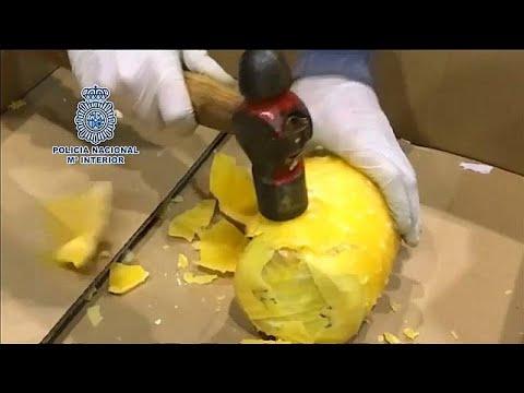 شاهد حجز مئات الكيلوغرامات من الأناناس الطازج المحشو بالكوكايين