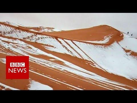 ثلوج تكسو رمال الصحراء الكبرى في ظاهرة نادرة