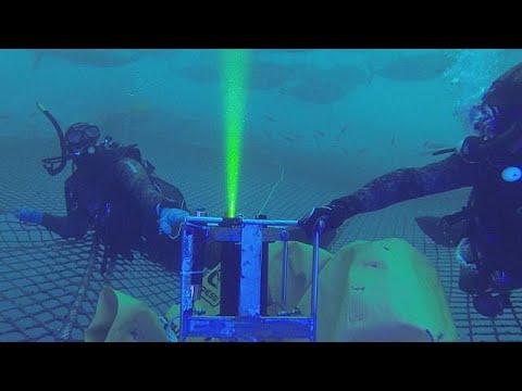 كاميرا حديثة تحسب وزن سمك التونة في الماء
