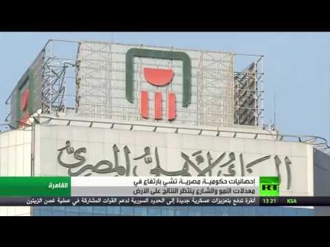 إجراءات مصرف مصر المركزي لاحتواء التضخم