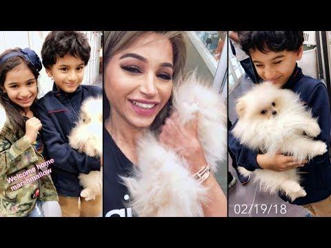فيديو نهى نبيل تهدي أطفالها كلبًا لطيفًا
