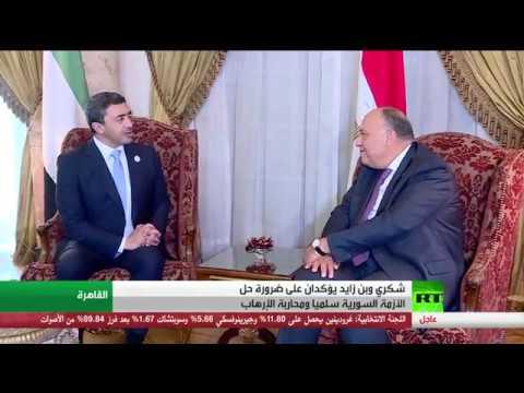 محادثات بن زايد مع شكري في القاهرة