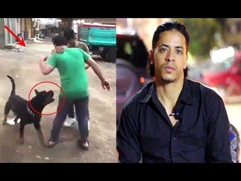 شاهد هذه نصائح نسر الكونغ فو بشأن أشهر قضية هجوم كلب في مصر علي شاب غلبان
