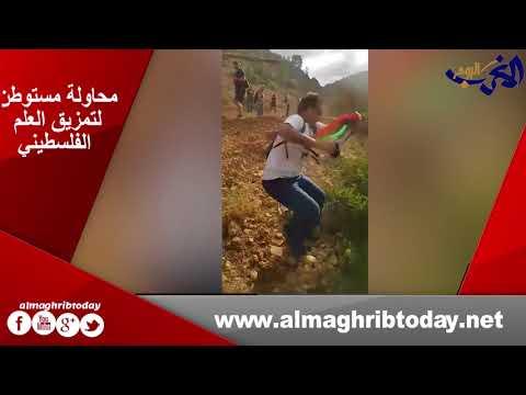 شاهد  مستوطن يحاول تمزيق العلم الفلسطيني