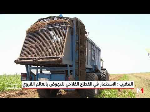 شاهد استراتيجية زراعية للنهوض بالعالم القروي في المغرب