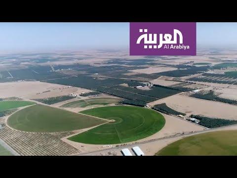 شاهد تعرف على تاريخ منطقة القصيم التي بدأ بها الملك سلمان جولته
