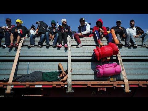 شاهدمهاجرون يستقلّون شاحنات دجاج للوصول إلى الحدود الجنوبية بين الولايات المتحدة والمكسيك