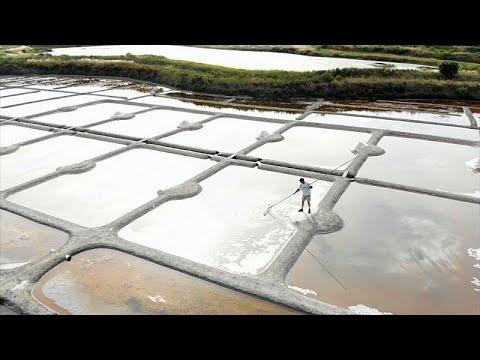 شاهد طريقة استخراج أحد أفخر أنواع الملح في العالم في فرنسا