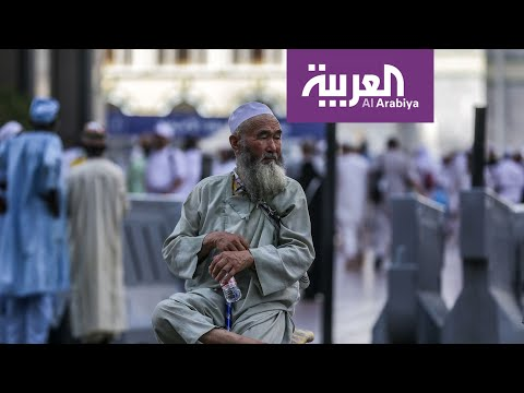 شاهد منظمة الصحة العالمية تشيد بالجهود السعودية الصحية خلال الحج