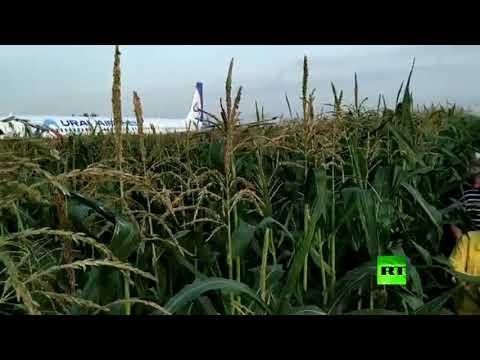 شاهد طائرة روسية تهبط اضطراريًّا في حقل مِن الذرة