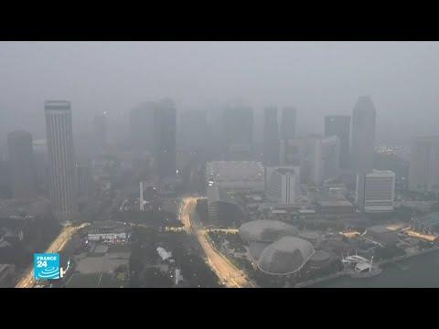 شاهد ضباب سام يغطي جنوب شرق آسيا بسبب حرائق الغابات