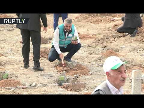 غرس 11 مليون شجرة في آن واحد في تركيا
