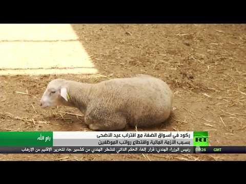 شاهد عيد الأضحى والأزمة المالية في الضفة الشرقية في فلسطين