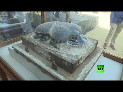 مصر تعلن اكتشاف حيوانات محنطة