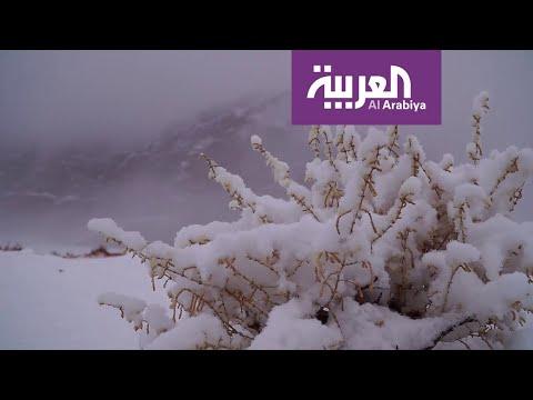 شاهد تعرف على الموجة القطبية التي ستؤثر على أجواء السعودية خلال أيام