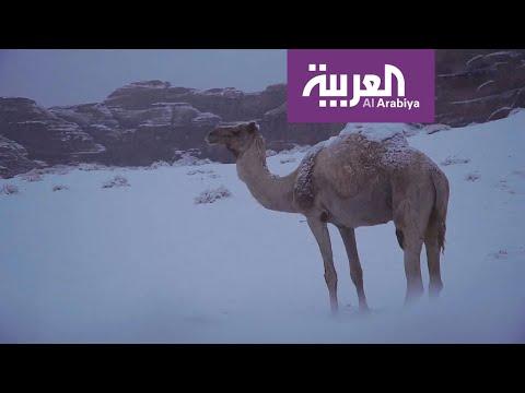 شاهد السعودية تحت كتلة باردة وتبوك والجوف تترقبان الثلج