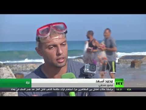 شاهد لقطات مميزة للبيئة البحرية في فيلم وثائقي عن قطاع غزة