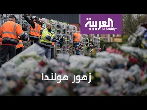 شاهد كورونا يضرب سوق الزهور في هولندا