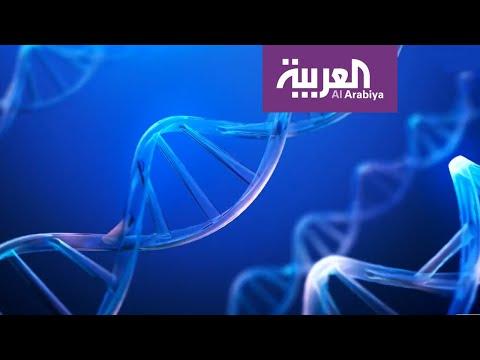 شاهد الخلايا الجذعية تحارب فيروس كورونا المستجد