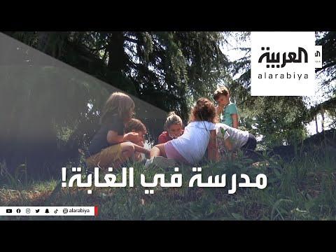 شاهد معلمة إيطالية تبتدع مدرسة الغابة وتتحدى كورونا