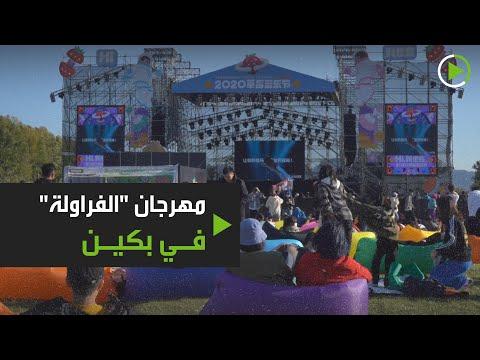 شاهد انطلاق مهرجان الفراولة الموسيقى الأكبر والأقدم في الصين