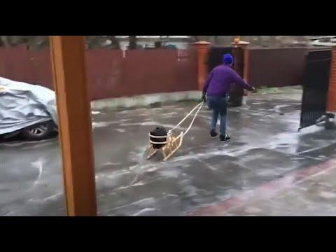 شاهد الجليد يشل العاصمة الأوكرانية وتحوِّلها إلى حلبات تزلج